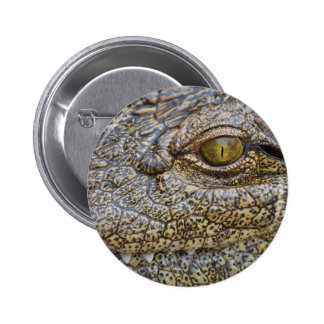 Nile crocodile from Africa Pins