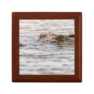 Nile Crocodile Keepsake Box