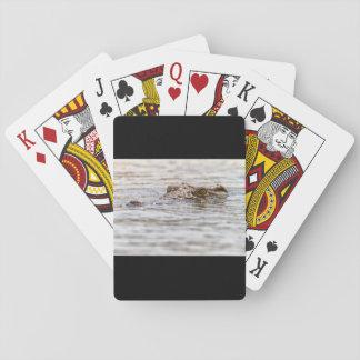 Nile Crocodile Deck Of Cards
