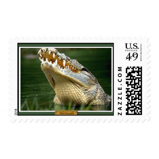 Nile Crocodile Postage Stamp