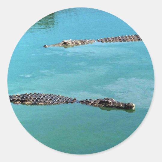 Nile Crocodiles Classic Round Sticker