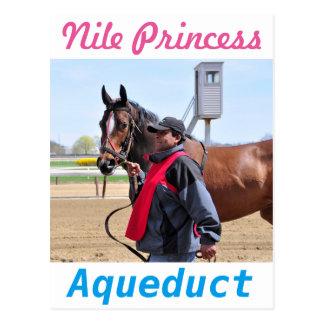 Nile Princess Postcard