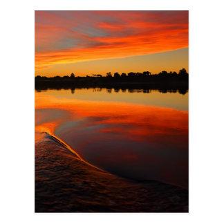 Nile Sunset Postcard