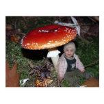 Niña exploradora - enano bajo el hongo de mosca postales