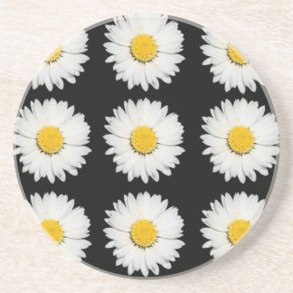 Nine Common Daisies Isolated on A Black Backgound Sandstone Coaster