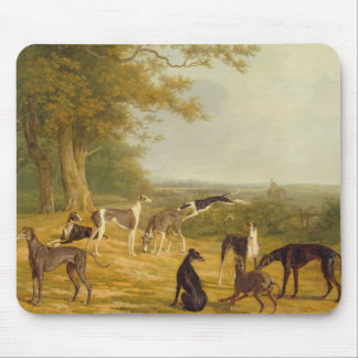 Nine Greyhounds in a Landscape (oil on canvas) Mouse Pad
