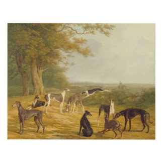 Nine Greyhounds in a Landscape (oil on canvas) Panel Wall Art