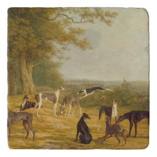 Nine Greyhounds in a Landscape (oil on canvas) Trivet