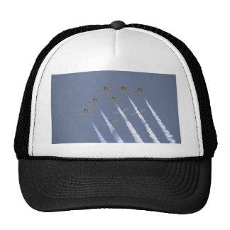 Nine Snowbirds From Below Hat