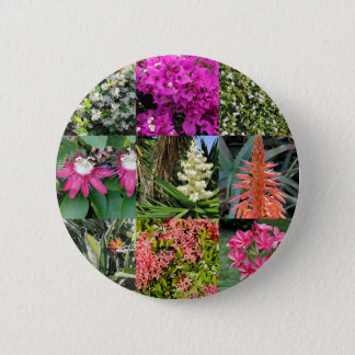Nine Varieties of Florida Flowers in Photo Panels Button