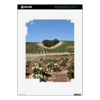 Niner Estates Heart Hill and White Roses Skin For iPad 3