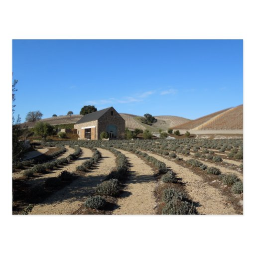 Niner Estates, Paso Robles, CA Event Center Postcard