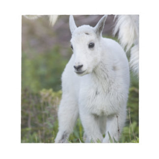 Niñera de la cabra de montaña con el niño en el pa blocs de notas