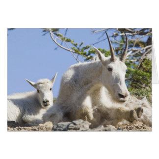 Niñera de la cabra de montaña con el niño en nacio tarjeta de felicitación
