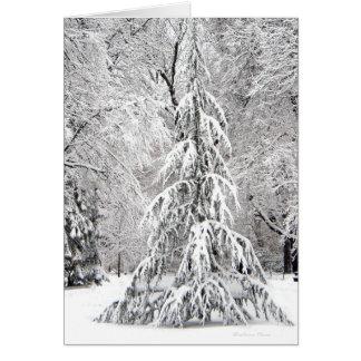 Ningún copo de nieve cae en el lugar incorrecto tarjeta de felicitación