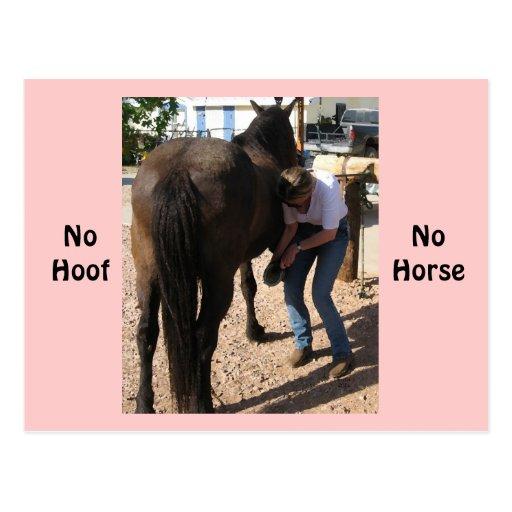 Ningún enganche, ningún caballo - tareas de la vaq tarjetas postales