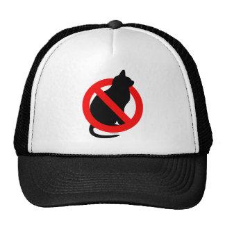 Ningún gatito gorras