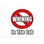 Ningún gimoteo en el laboratorio tarjeta postal