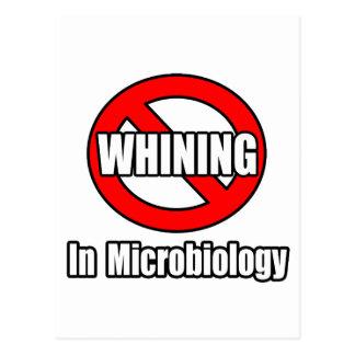 Ningún gimoteo en microbiología postales