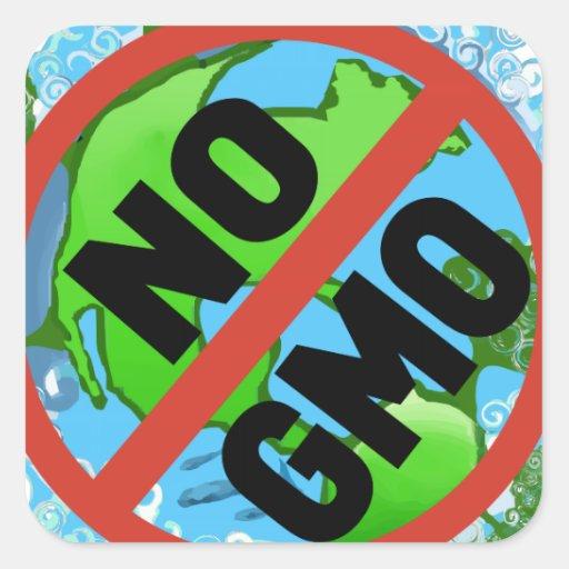 NINGÚN GMO PEGATINA CUADRADA