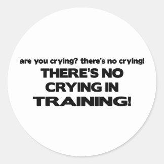 Ningún griterío en el entrenamiento pegatina redonda