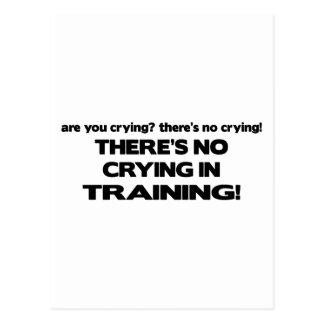Ningún griterío en el entrenamiento postales