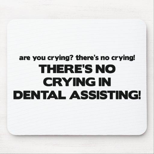 Ningún griterío en la ayuda dental mousepad