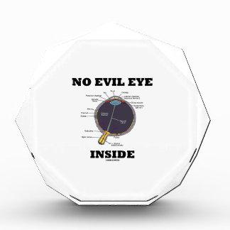 Ningún interior del mal de ojo (humor anatómico