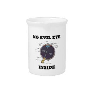 Ningún interior del mal de ojo (humor anatómico jarra