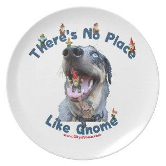 Ningún lugar tiene gusto del perro del gnomo platos de comidas
