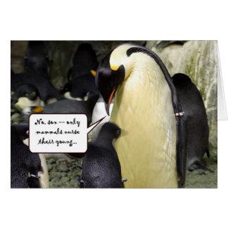 Ningún pingüino libre del almuerzo tarjeta de felicitación