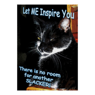 Ningún sitio para el poster inspirado felino de lo
