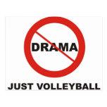 Ningún voleibol del drama apenas postal