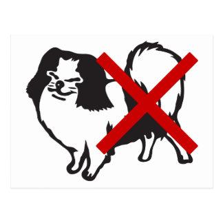 NINGUNA muestra japonesa de los perros… Tarjeta Postal