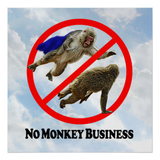 Ningunas estupideces - poster