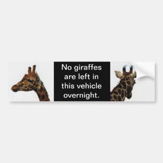 ningunas jirafas dejadas detrás de pegatina para e pegatina para auto