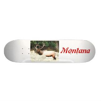 """Ningunos # 701 - monopatín, alce Montana, 7, 3/4"""""""