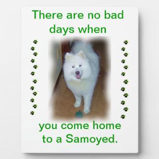 Ningunos malos días - placa del samoyedo