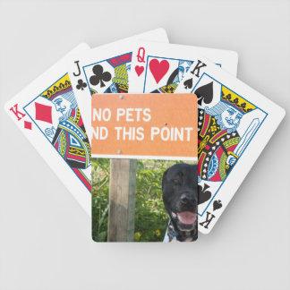 ningunos mascotas con el perro firman en la imagen barajas de cartas