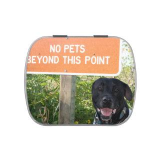 ningunos mascotas con el perro firman en la imagen latas de dulces
