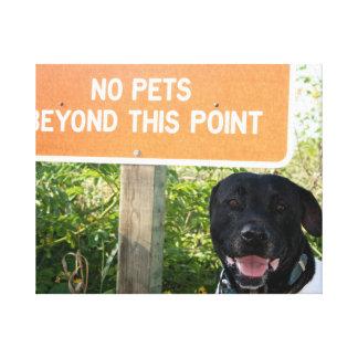 ningunos mascotas con el perro firman en la imagen impresiones en lona