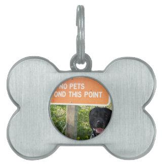 ningunos mascotas con el perro firman en la imagen placas de mascota