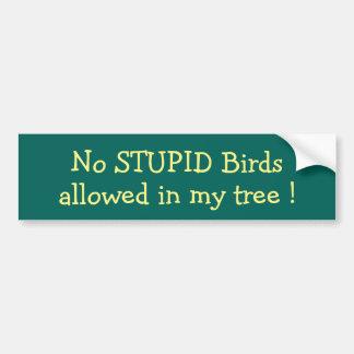 ¡Ningunos pájaros ESTÚPIDOS permitidos en mi Pegatina Para Auto