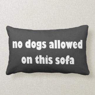 Ningunos perros permitidos en este sofá cojines