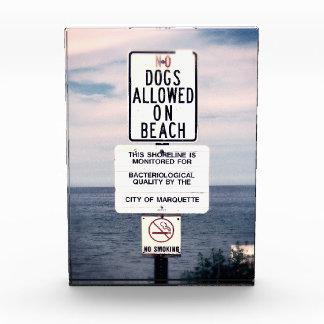 Ningunos perros permitidos en la playa
