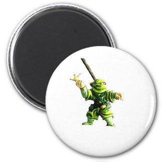 Ninja in Green Magnets