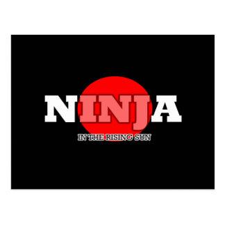 Ninja In The Rising Sun Postcard