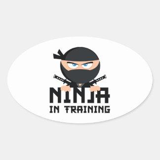 Ninja In Training Stickers