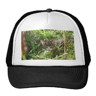 Ninja Kitten Trucker Hat