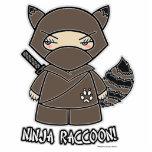 Ninja Raccoon! Photo Sculpture